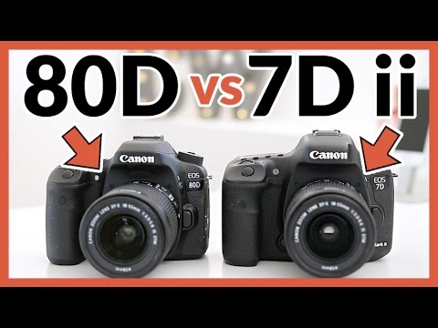 Canon 80D vs Canon 7D Mark ii - In Depth Comparison Review!