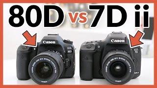Canon 80D vs Canon 7D Mark ii - In Depth Comparison Review!