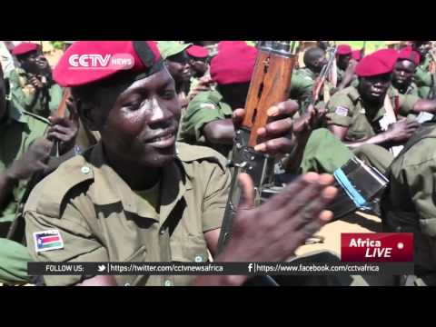 South Sudan government and opposition agree on weapons Machar can bring in