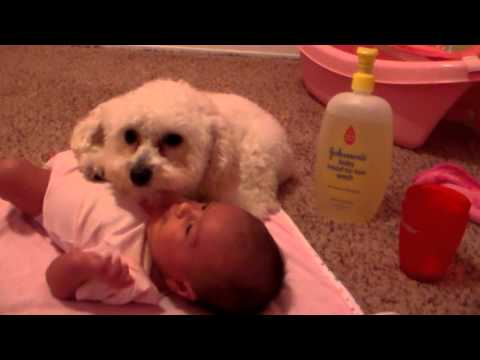 Protecting His Baby Sister (original) video