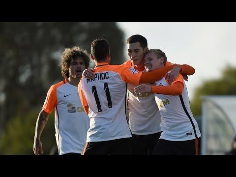 Shakhtar 2-2 Austria. Highlights (27/01/2017)