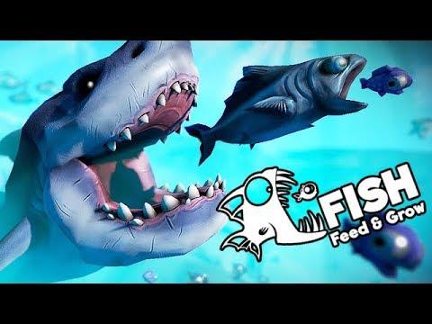 feed and grow fish gameplay german besiege den weißen