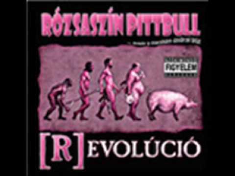 Rózsaszín Pitbull - Mi a fasz van mp3 indir
