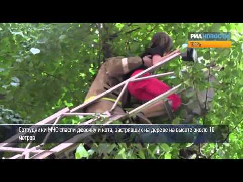 Спасатели сняли девочку и кота с дерева