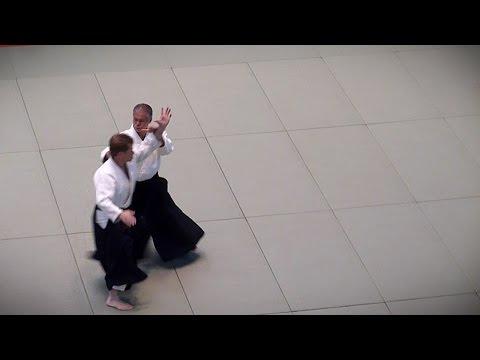 Aikido - Miyamoto Tsuruzo Shihan - 51st All Japan Aikido Demonstration 2013