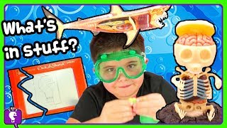HobbyScience Lab COMPILATION with Fun Facts by HobbyKids!