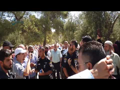 Video Qasioun News: Jerusalem moment of settlers break in Al-Aqsa mosque from Mgharbe door 13-8-2015