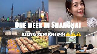 """[DU HỌC TRUNG QUỐC]""""Họp lớp"""", Đi học, KTV bên Tàu, Bến Thượng Hải, Ăn cơm gà Hải Nam #weekvlog"""