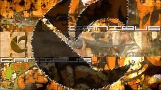 Watch Canibus Ill Buss em U Punish em video