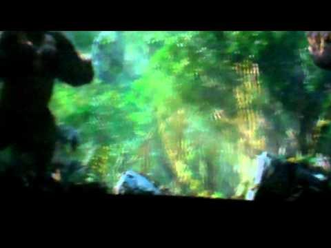 King Kong 360 3d   Universal Studios, Hollywood video