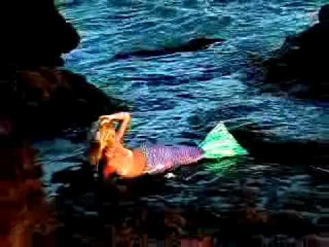 Tail in Secret Hawaii Cove