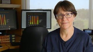 Professor Lin Fritschi | Could your workplace be giving you cancer?