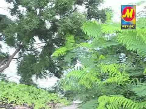 Riyaz-payal Cham ( Rajasthani Album).dat video