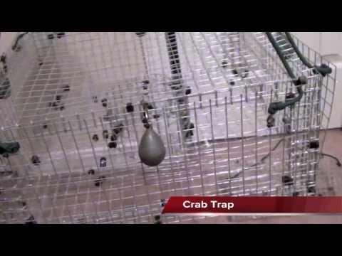 Handmade Fishing traps. crab traps