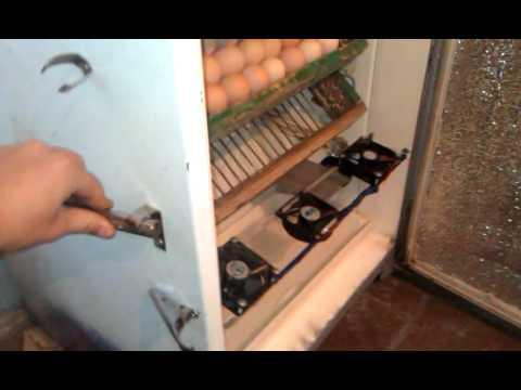 Скорая помощь при аритмии в домашних условиях