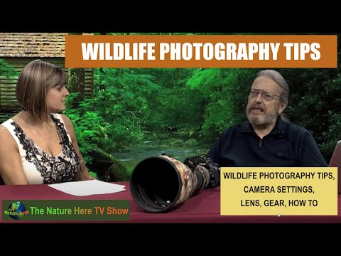 WILDLIFE PHOTOGRAPHY - Episode 15