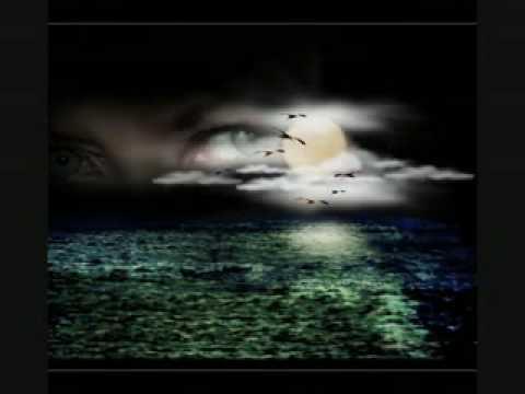 Diary Of Dreams - Phantasmogoria