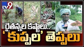 Paddy crop lies in rain water at Narsapuram - Phethai cyclone effect