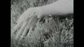 Watch Cyndi Lauper Above The Clouds video