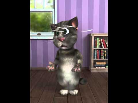 Il Gatto Tom
