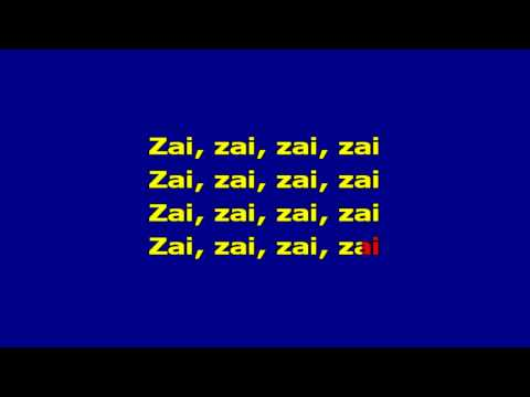 Nelu Stratan - Zai Zai  Karaoke video