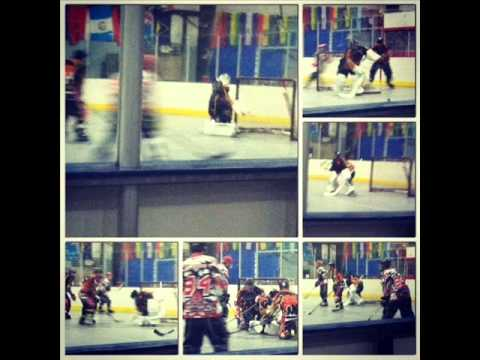 The Professional Inline Hockey Association. This was my 1st season playing...to view all stats from the season go to www.thepiha.com and to follow all fanati...