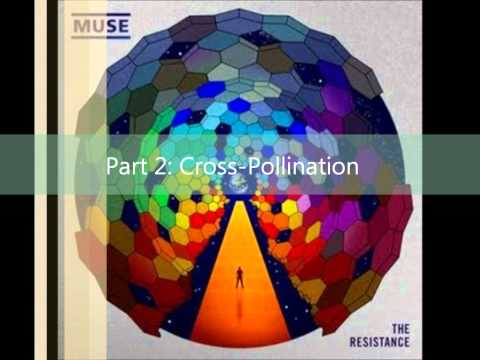 Muse - Exogenesis symphony