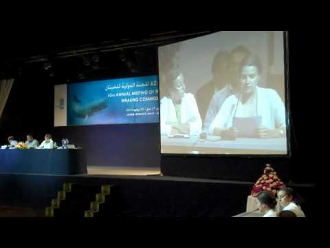 Director of NOAH - for dyrs rettigheder, Siri Martinsen, speaks at IWC62.wmv