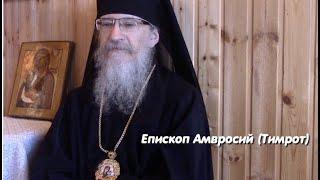 Епископ Амвросий (Тимрот): реакция Православной Церкви на короновирус