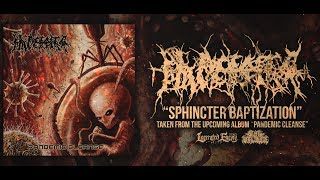 PLACENTA POWERFIST - SPHINCTER BAPTIZATION [SINGLE] (2019) SW EXCLUSIVE