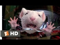 Stuart Little (1999)   Stuck In The Washing Machine Scene (2/10) | Movieclips