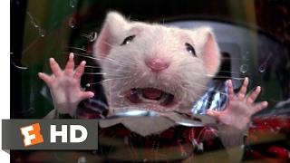 Download Stuart Little (1999) - Stuck in the Washing Machine Scene (2/10) | Movieclips 3Gp Mp4