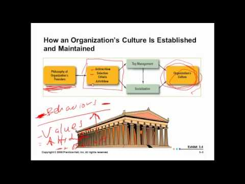 Organizational Culture:  Principles of Management