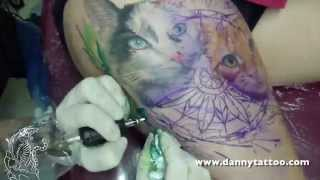 Gatos Realistas com fundo de Aquarela - Danny Tattoo - TimeLapse (Realistic Cat with Watercolor)