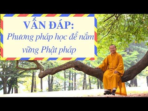 Vấn đáp: Phương pháp học để nắm vững Phật pháp