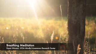 Breathing Meditation Ucla Mindful Awareness Research Center