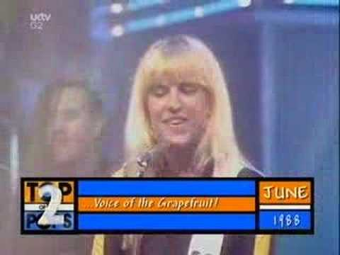 Voice Of The Beehive - Dont Call Me Baby [totp2]