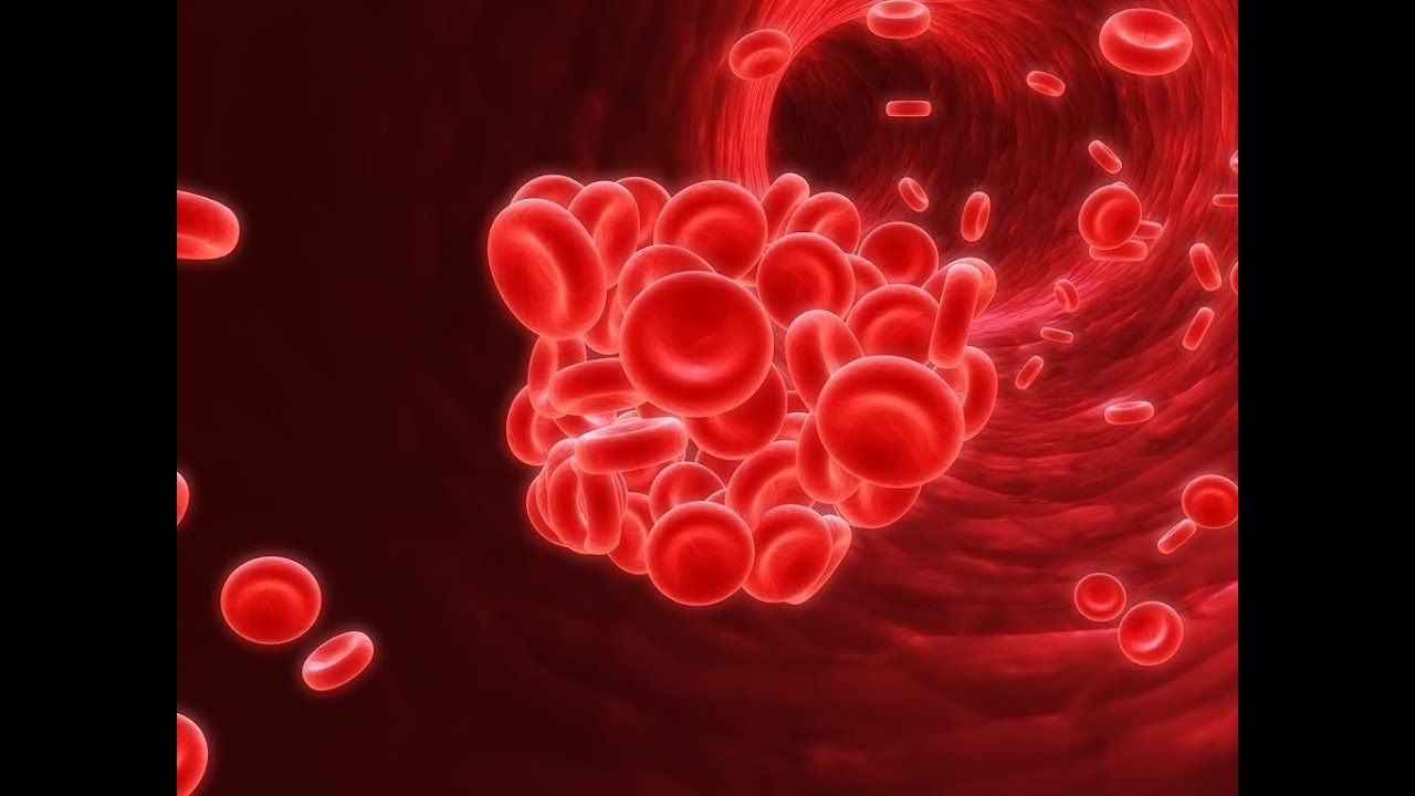 Quick Overview of Anemia