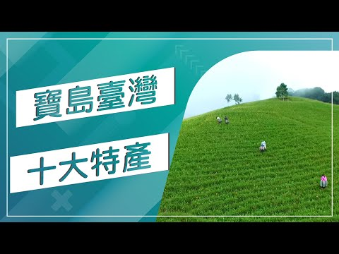 台灣-草地狀元-20180219 -我的家鄉94狂:台灣十大鄉鎮特產