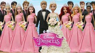 Play Doh Wedding Dress Anna & Kristoff Disney Prince & Princesses Elsa Tiana Belle Ariel