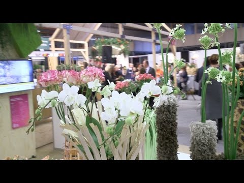 Royal FloraHolland Seasonal Trade Fair & Florist Event 2016