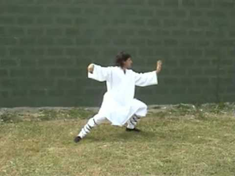 Tai Chi Chuan Yang video