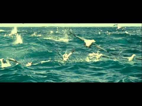 Oceanos (Documental) Parte 2 - Español castellano
