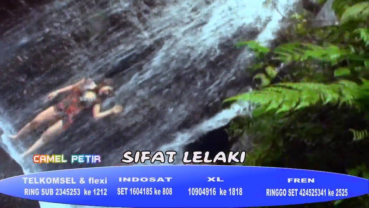 Camel Petir - Sifat Lelaki.flv - YouTube