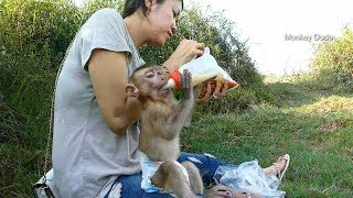 Monkey Dodo Happy Too Much When Go Out Side With Mama And Daddy