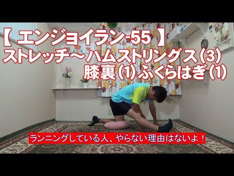 #55 ハムストリングス(3)膝裏(1)ふくらはぎ(1)/筋肉痛改善ストレッチ・身体ケア【エンジョイラン】