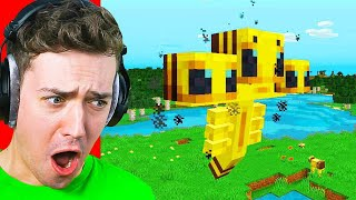 Reacting To THE WORST Minecraft BOSS IDEAS! (bee wither)