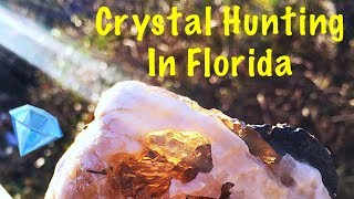 The Crystal Collector Digging Calcite Crystals & Fossil Shells in Florida