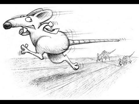 Как покинуть крысиные бега? [Автор видео Артем Мельник]