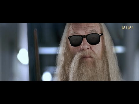 Fresh Dumbledore - Back to the Roots [WiWa Music Video] (HD)